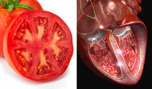 07-Tomato-HeartFoods-That-Look-Like-Body-Parts-1-300x177