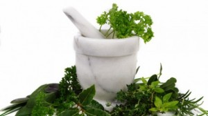 herbs-and-mortar_thumb_medium490_0