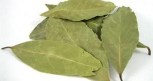 Комплетно прочистете го организмот со ловоров лист