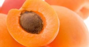 Дали семките од кајсија може да ве спасат од рак?