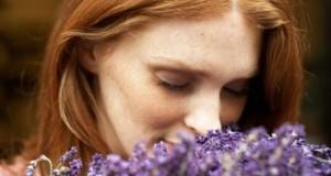 Лаванда, ванила, јасмин – мириси за среќа, убавина и здравје