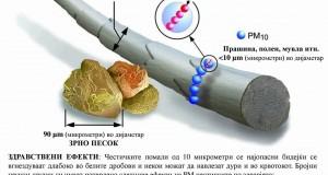 Зошто се опасни ПМ 10 чeстичките во воздухот во Македонија?